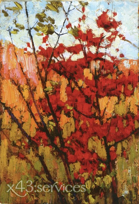 Tom Thomson - Ahorn im Herbst - Soft Maple in Autumn