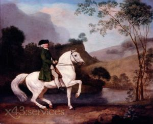 Reproduktion nach George Stubbs - Herr Sidney Meadows