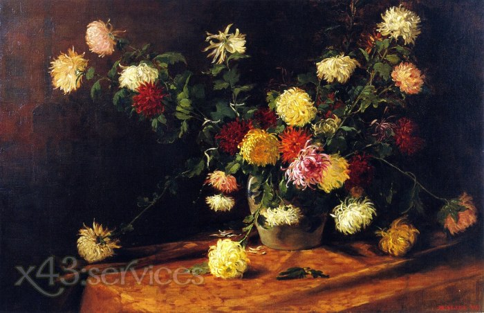 Mathias J Alten - Chrysanthemen - Chrysanthemums