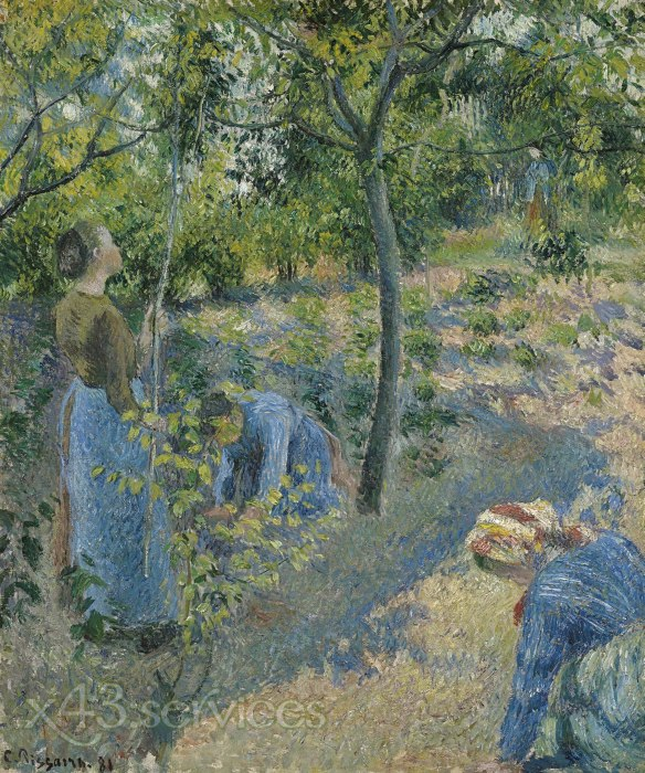 Camille Pissarro - Apfelpflucken - Apple Picking