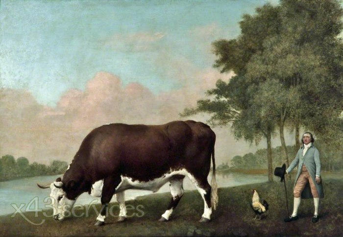 George Stubbs - Der Lincolnshire Ochse - The Lincolnshire Ox